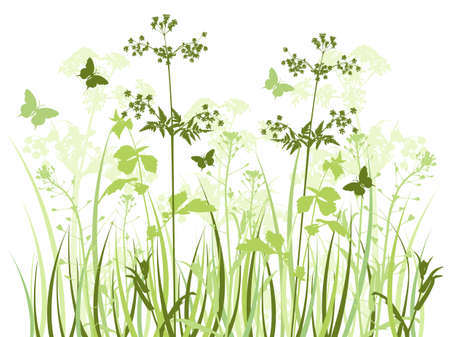 Green vector background with wildflowers and butterflies