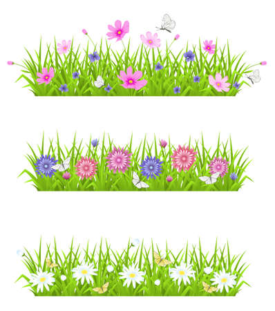 Vector green background with grass and flowers Illustration