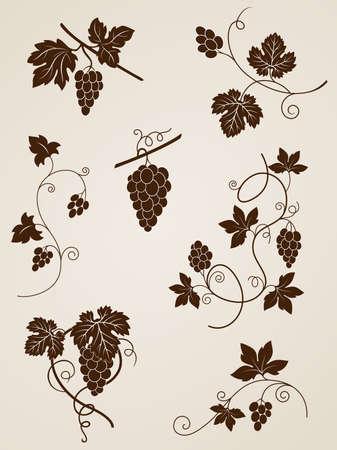 wijnbladeren: decoratieve wijnstok elementen voor ontwerp Stock Illustratie