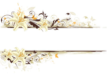 floral background with white lily and butterflies Ilustração