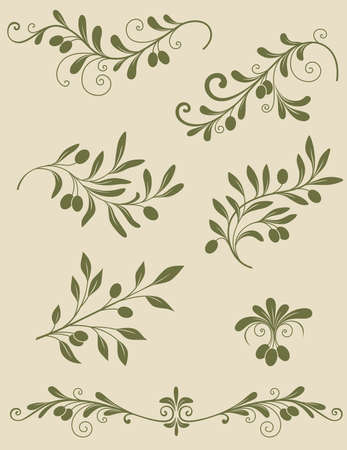 olive leaves: Vintage Decorative olive branch