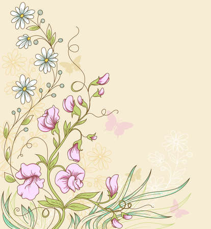 sweet pea:  floral  background with sweet pea and butterflies