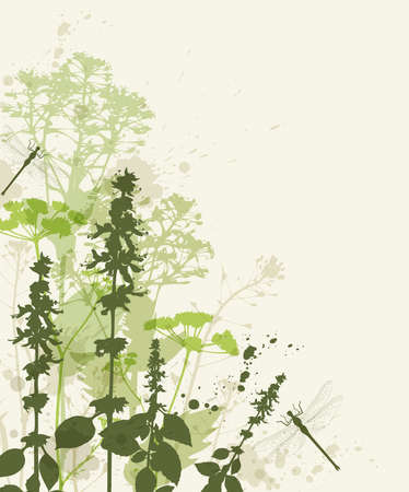 Floral vector background with green flowers and dragonfly