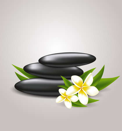 spa stones: flowers and spa stones