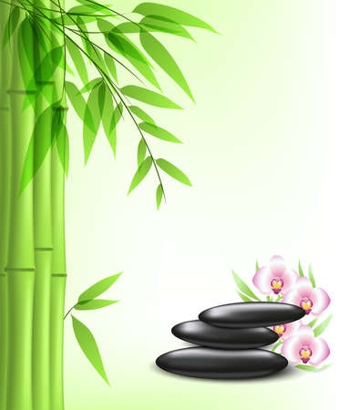 green bamboo and spa stones Vector