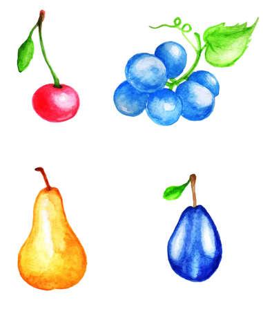 Set of vector watercolor fruits and berries Vector