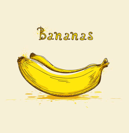 Vector background with yellow ripe bananas