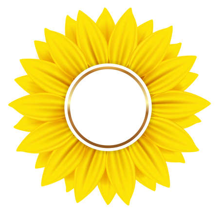 sunflowers: Round vector banner with yellow sunflower on a white background