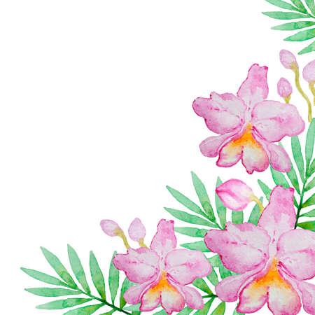dessin fleur: fond d'aquarelle avec des orchidées roses et de feuilles vertes
