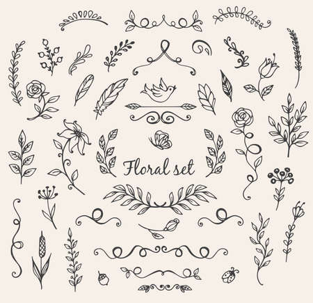 nature  plant: Set of hand drawn vector floral elements for design