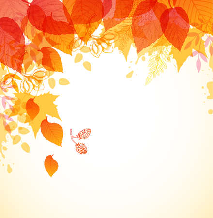 falling leaves: Abstract autumn background with red and orange falling leaves