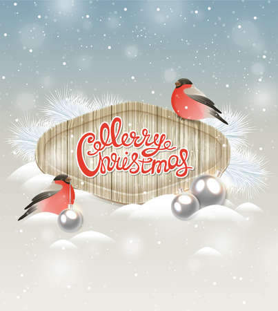 bullfinch: Christmas background with two bullfinch and silver decorations