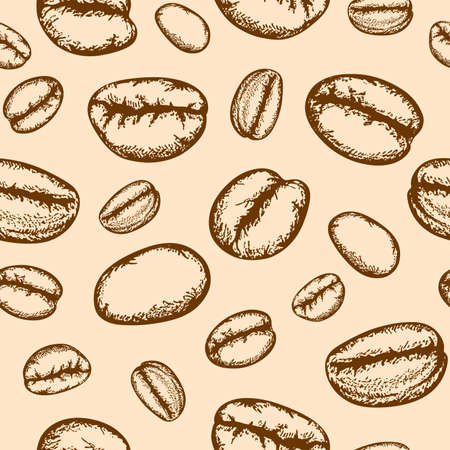 grano de cafe: dibujado mano de la vendimia sin patrón, con granos de café