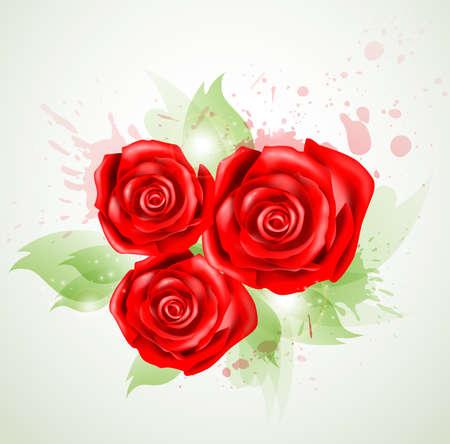 rosas rojas: Resumen de antecedentes con el ramo de rosas rojas Vectores