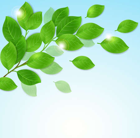 blue green background: Branch with green leaves on a blue background. Vector illustration.