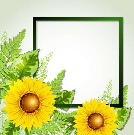 sunflowers: Summer background with green leaves and sunflowers. Summer card with place for text. Vector illustration.