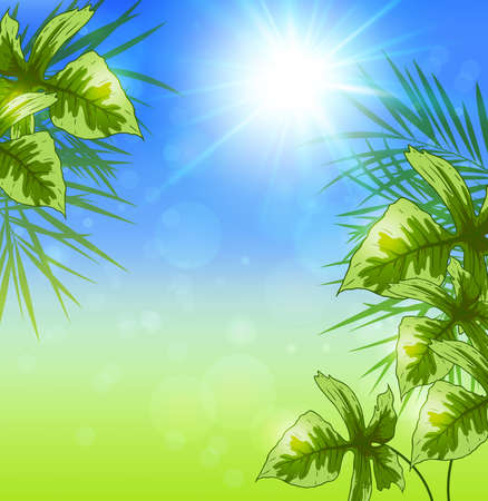 green leaves: Summer background with green tropical leaves and sun. Vector illustration.