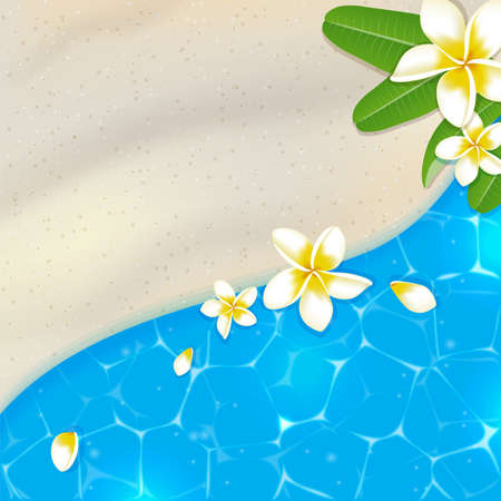 sandy beach: Sandy beach and blue sea water. Tropical vector background with flowers.