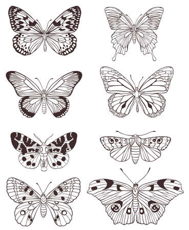 Set of vector hand drawn butterflies on a white background