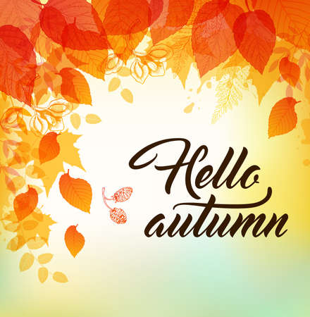 falling leaves: autumn background with orange and yellow falling leaves. Hello autumn lettering.