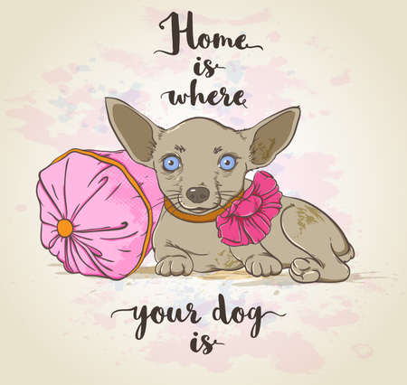 small dog: background with small dog on a pillow and lettering.