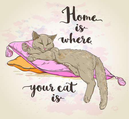 beautiful homes: background with cat on pillow and lettering.