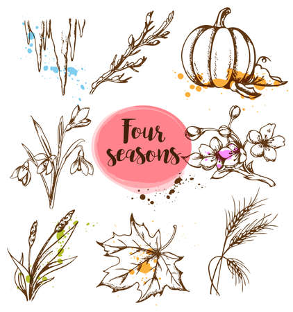 elements of nature: Set of vector hand drawn nature design elements in vintage style. Seasonal specifics.