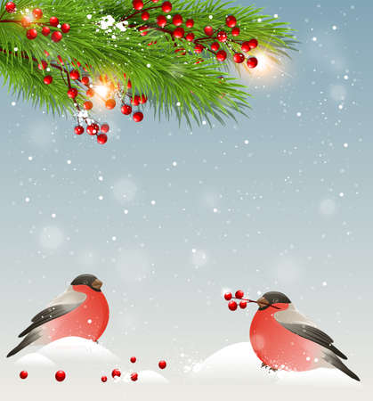 Winter landscape with two bullfinches in snow, green fir branches and red berries. Christmas background. Vektorové ilustrace