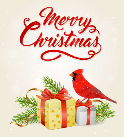 Vector Christmas banner with red cardinal bird, gifts and greeting inscription. Merry Christmas lettering Illustration