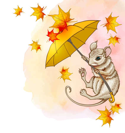 Cute little mouse flying on an umbrella with maple leaves. Autumn vector background with watercolor texture