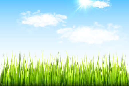 Spring background with fresh green grass and blue sky with clouds. Vector illustration.