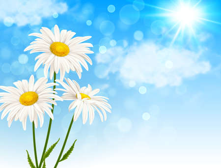 White daisy flowers and clouds on a blue sky background. Spring floral background. Vector illustration.