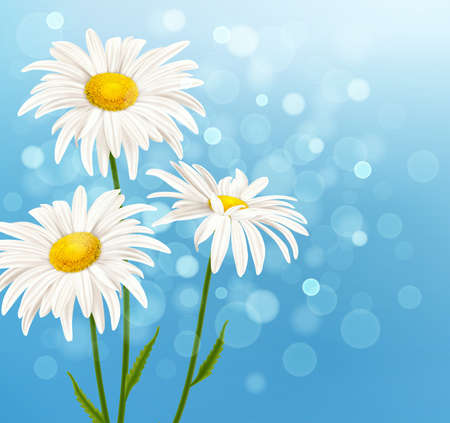White daisy flowers on a blue sky background. Spring floral background. Vector illustration.