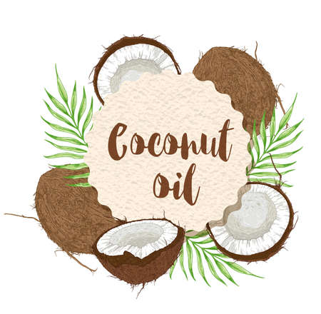 Round paper label with coconuts and green palm leaves on a white background. Vector illustration