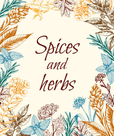 Vintage hand drawn floral background with spices and herbs. Vector illustration