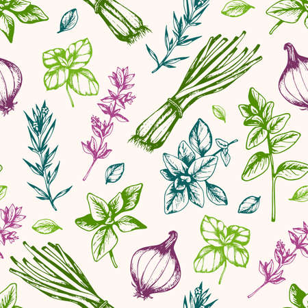 Vintage hand drawn seamless pattern with Italian herbs and spices