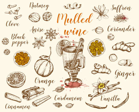 Vintage vector hand drawn mulled wine and spices. Traditional Christmas food and drink.