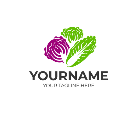 Chinese napa cabbage, white cabbage and red kubis merah, logo design. Vegetables, organic and natural food, vector design and illustration