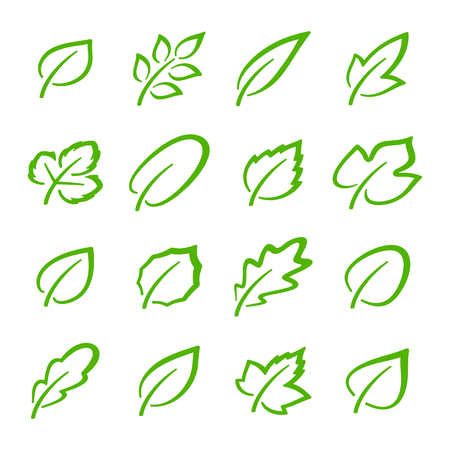 Simple set of linear green leaves vector icons. Contains such vector icons as oak leaf, currant leaf, strawberry leaf, ash leaf and others Çizim