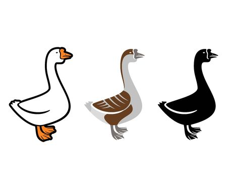 White goose, gray goose and goose silhouette,  design. Bird, animal, pet and poultry, vector design and illustration Standard-Bild - 129133085