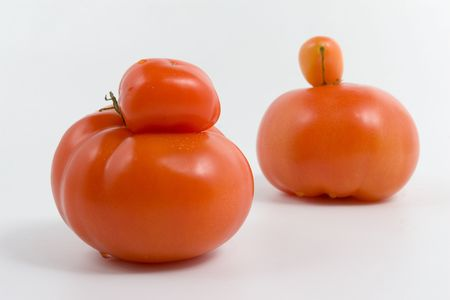 modyfikować: Genetycznych modyfikacji. Unikalne pomidorów na białym tle. Zdjęcie Seryjne