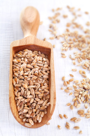 Wheat grain on white wooden table