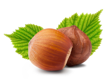 Ripe brown hazelnuts with green leaves on white background Stock Photo