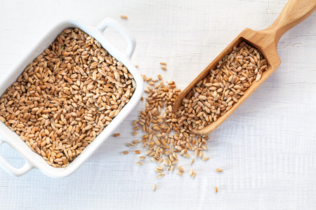 Full wooden scoop of Wheat Seeds on white wooden background