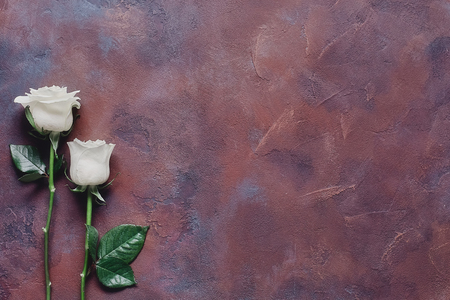 Two white roses on a beautiful textured stone background Stock Photo