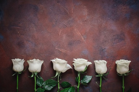Six white roses on a beautiful stone background. Space for labels