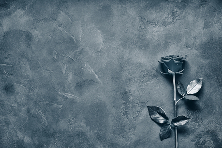 Black rose lies on a dark stone slab. Space for labels