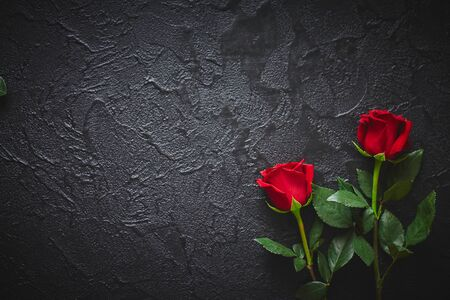 Two red roses on a dark, black stone background. Place for text.