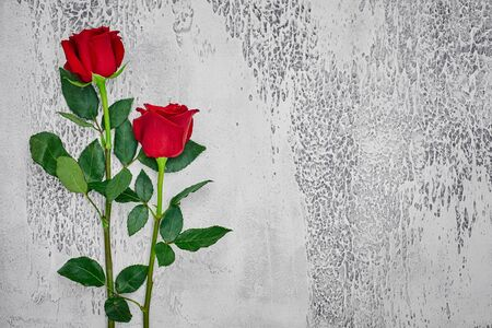 Red roses on a light textured background. Place for text, top view. Фото со стока