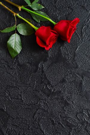Two red roses on a dark, black stone background. Place for text. Фото со стока